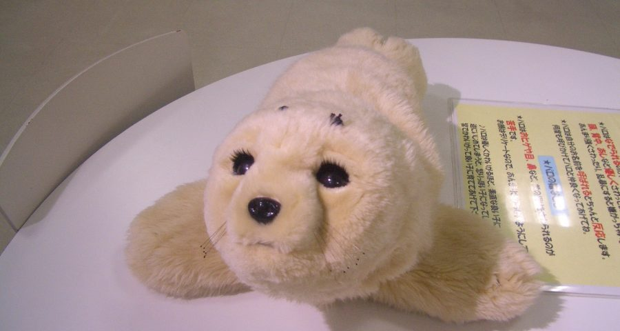 Paro, a fluffy white robot seal, sits on a table, looking off camera
