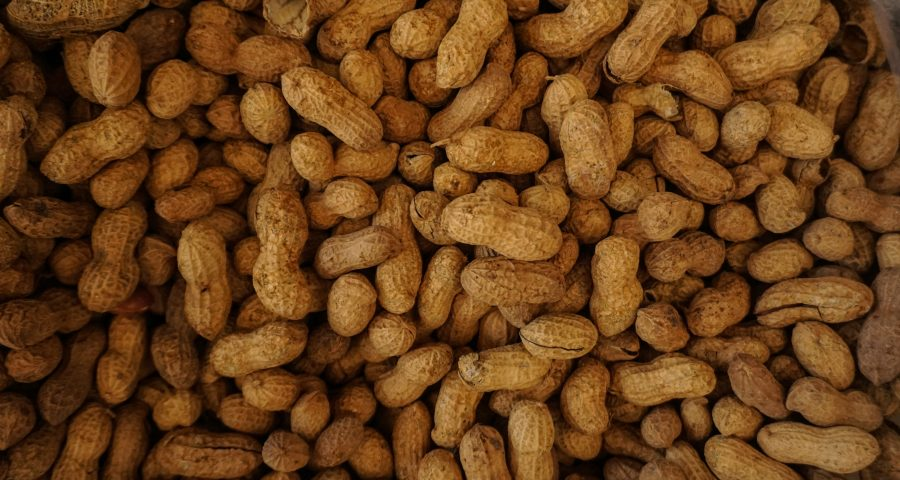 Peanuts with shell