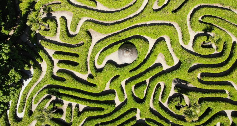 Green maze seen from above