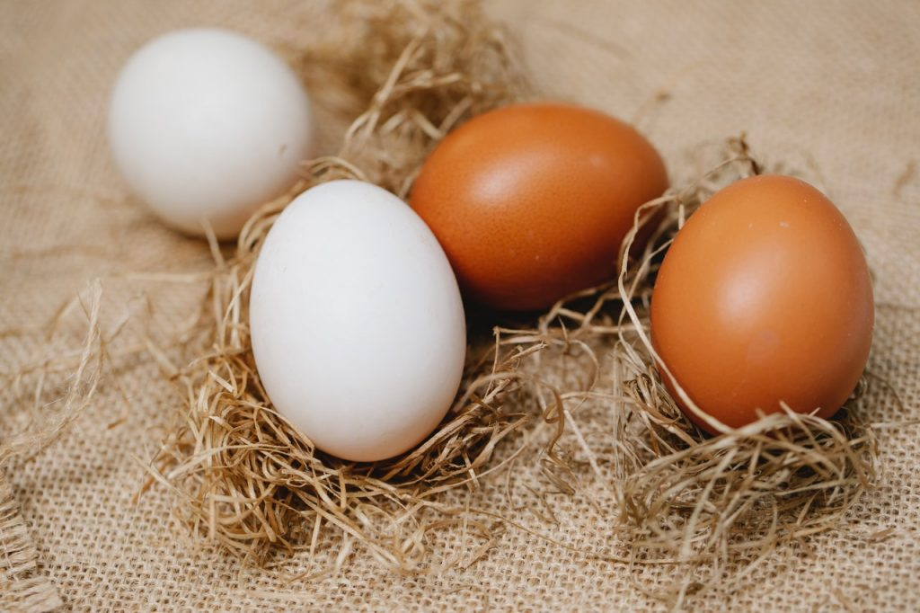 Two white shell eggs and two brown shell eggs