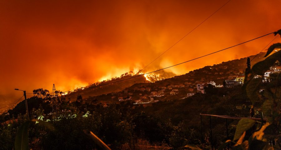 Photo of wildfires.