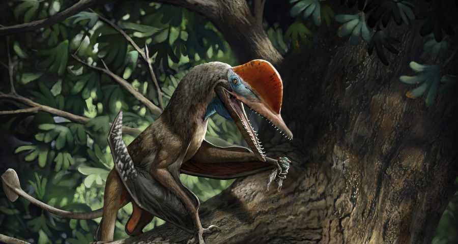 Depiction of pterosaur with opposed thumbs in the forest.