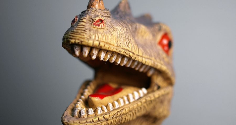 Photo of T-rex toy
